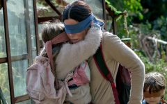What is Your Opinion on Bird Box?